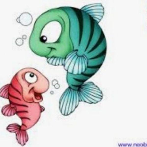 Conférence du mois de mars : poisson